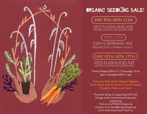 Seedling_sale_online