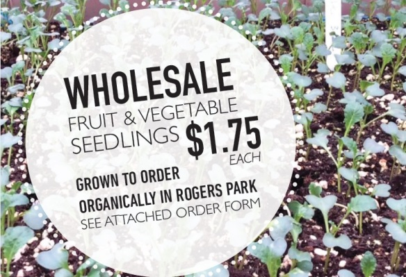 wholesale-seedlings-flier